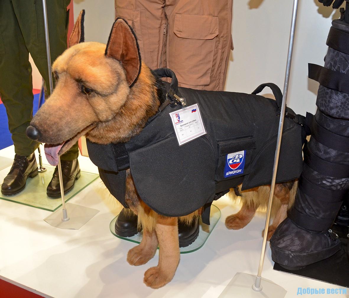 Собачий-бронежилет